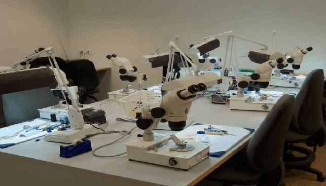 מעבדה גמולוגית