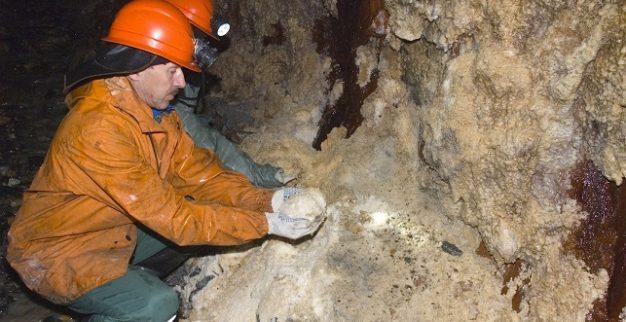 כריית יהלומים תת קרקעית