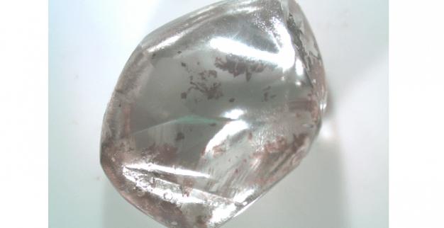 יהלום לבן פארק היהלומים