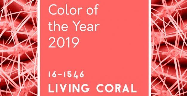 אלמוג חי צבע השנה 2019